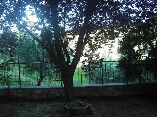 Chartaria, giardino