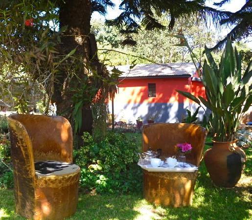 Vanga Guest House: VERTIGO- Afternoon Tea