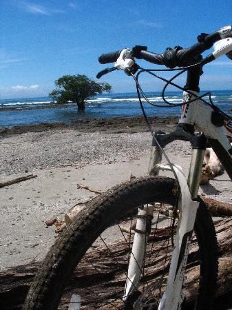 Montezuma Bike Tours