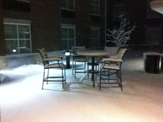 Homewood Suites Madison West: courtyard in February