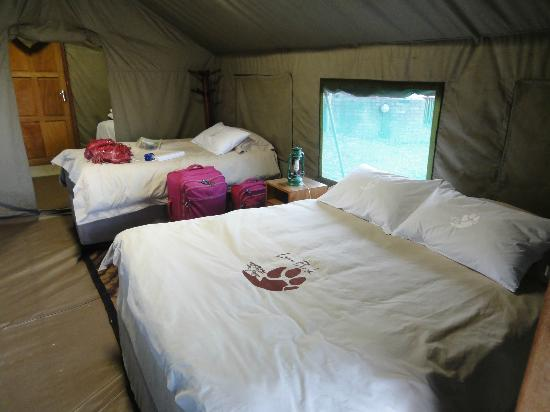 Wildside Tent Camp Lion Park: Camas deliciosas