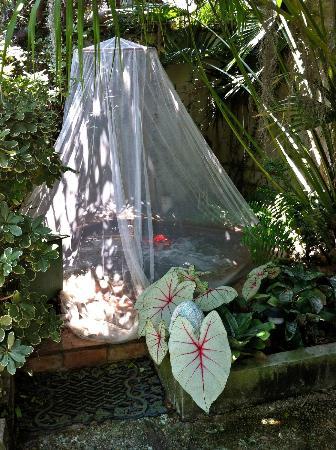 Antebellum Guest House: Hottub