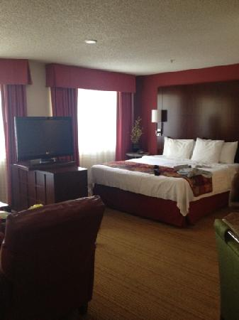 Residence Inn Pleasant Hill Concord: Studio suite