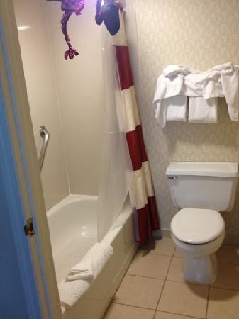 Residence Inn Pleasant Hill Concord: Bathroom