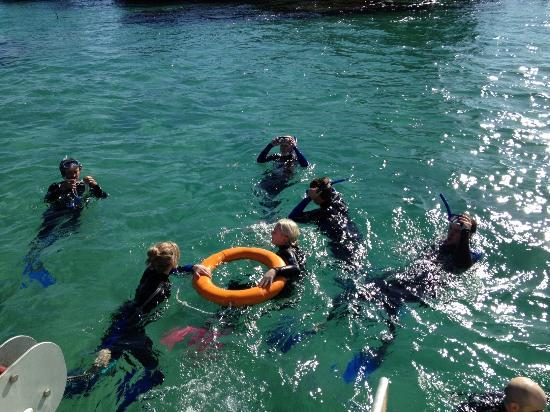 Adventure Moreton Island: Snorkelling at Moreton Wrecks with Tangatours