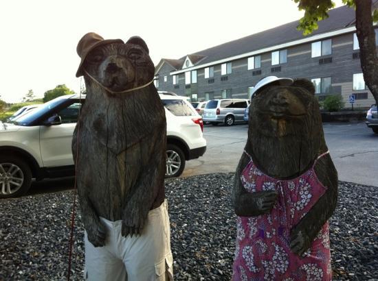 Comfort Inn at Maplewood: greeters!
