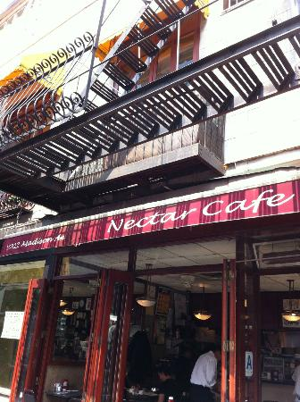Nectar Cafe New York City