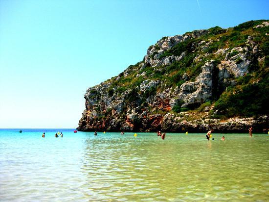 Hotel Sa Barrera: Beach