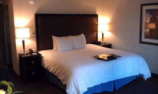 Hampton Inn & Suites Nashville - Downtown: room