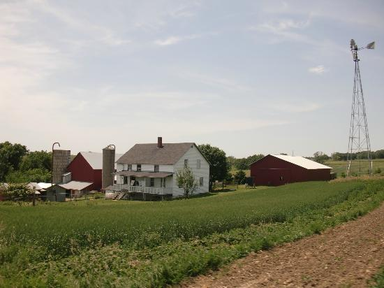 Amish Tours of Harmony: Amish house.
