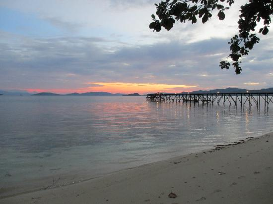 Raja Ampat Dive Resort: View of the jetty from the beach
