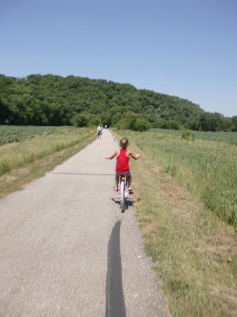 Root River: Biking the gorgeous landscape!