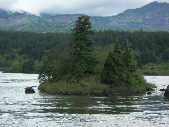 The Columbia Gorge Riverboat : Island in the stream