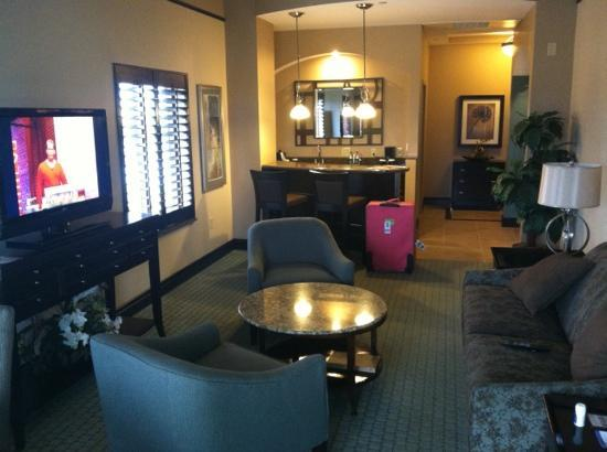 Hilton Garden Inn Jacksonville Downtown/Southbank : bar and living area