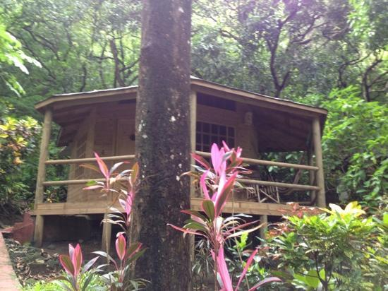 Hotel Los Mangos: our home!
