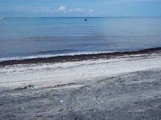 Hotel Playa Blanca Beach Resort: Dirt 