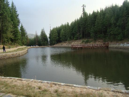 The Wilderness : Tannijubbar lake