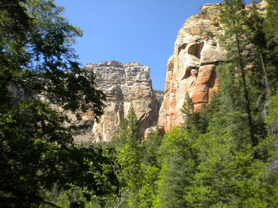 Oak Creek Canyon : trees and red rocks