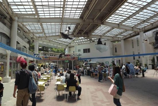 Marinepia Matsushima Aquarium: 館内全景。背後に遊園地。