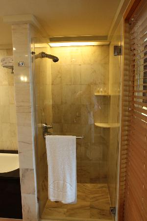 Small shower with fixed shower head only - Picture of Mandarin ...