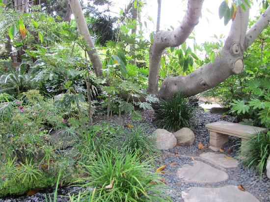 Small Benches Throughout For Quiet Contemplation Picture Of Self Realization Fellowship