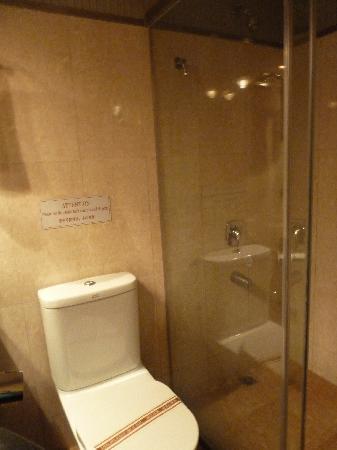 Camellia Hotel : shower