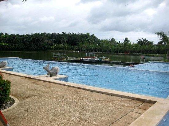 Swimming pool picture of san antonio resort roxas city tripadvisor for San antonio city swimming pools