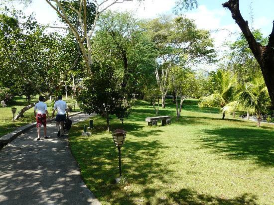 Mimpi Resort Menjangan: le parc