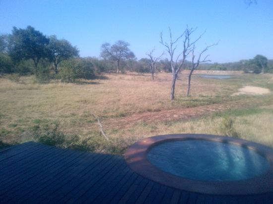 Vuyatela Lodge & Galago Camp: view from room overlooking water hole