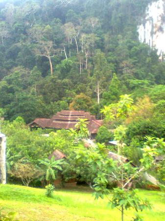 The Cliff & River Jungle Resort: restaurant near the cliff