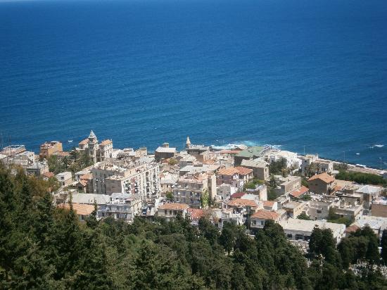Cezayir: Виды