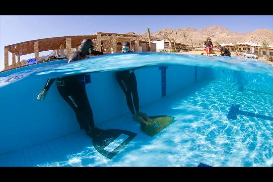Canyon Estate Dahab Beach Hotel Residence: free diving school