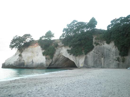 Cathedral Court: Cathedral Cove - just a walk away fr the B&B