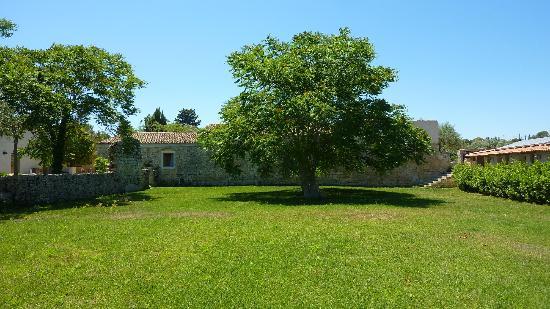 بورجو ألفيريا: Trees and plenty of grounds 