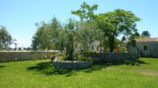 Agriturismo Borgo Alveria: Wonderful Lush Trees