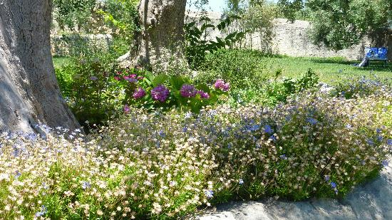 Agriturismo Borgo Alveria: The beautiful gardens