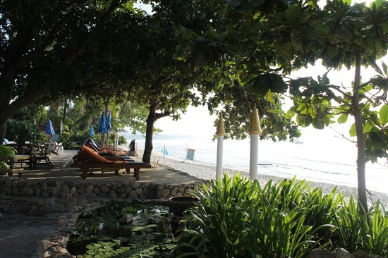 B2@Samui Beach Resort: Get up at daybreak to reserve the shady spot