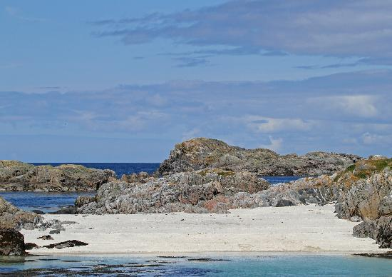 Sea Life Surveys: Beach at Cairns of Coll-Lunch destination!