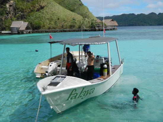 Misool Eco Resort: Falaya dive boat