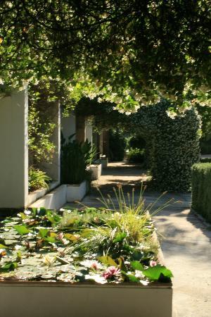 Agroturismo Alfabia Nou: Garden