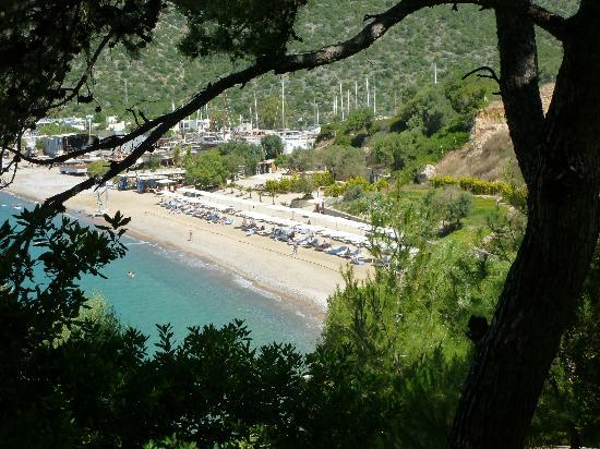Club Med Bodrum Palmiye : la plage vue du village