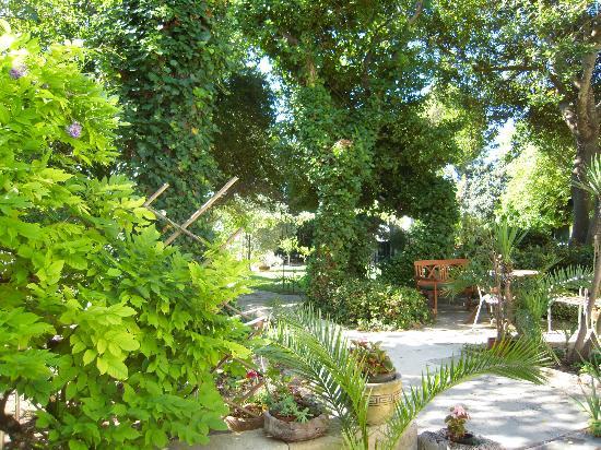 B&B Resort Nostra Signora dei Turchi : Ancora il giardino