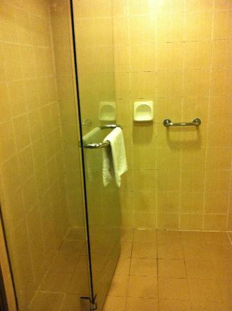 โฮเต็ล อาร์มาดา เปอตาลิง จายา: bathroom