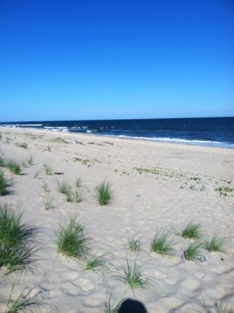 The Ocean Dunes at Amagansett: Beautiful, quiet beach