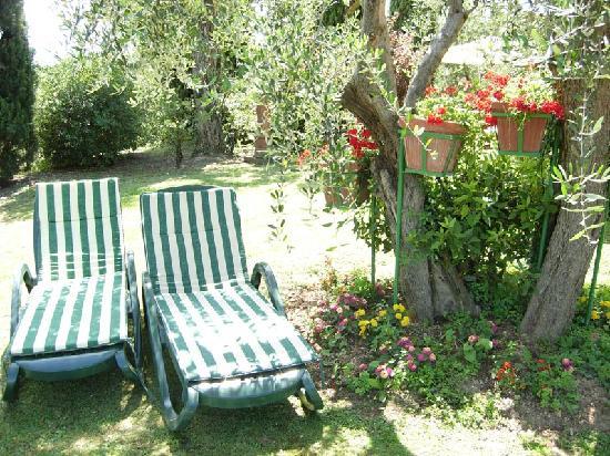 Villa La Nina: giardino con lettini