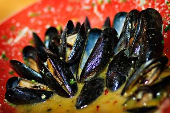 Courtyard Restaurant: Mussels