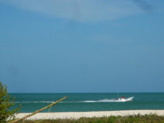 Hotel & Villas Playa Maya Resorts : Our View
