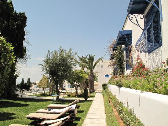 Hotel Dar Said : Terrazza