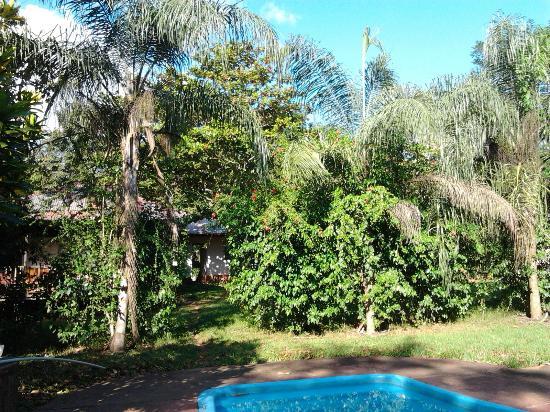 Tarantula Eco Hostel: Piscina