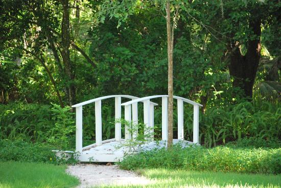 Sugar Mill Botanical Gardens: Bridge
